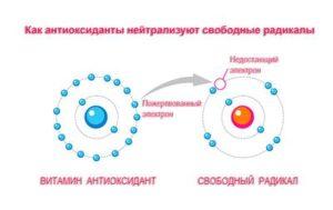 Антиоксиданты, свободные радикалы